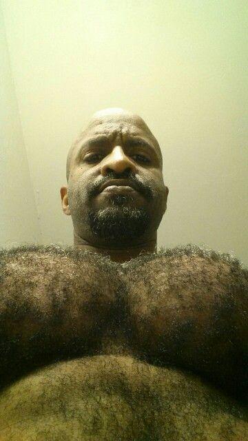 Hairy bears