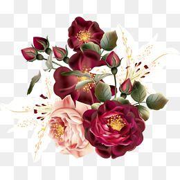 Red Flowers Png Free Download Flower Png Images Floral Poster Floral Border Design