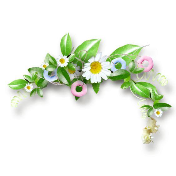 fleurs,tube,flowers,png: