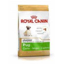 Royal Canin Pug Junior 1,5 Kg - Breed Health Nutrition