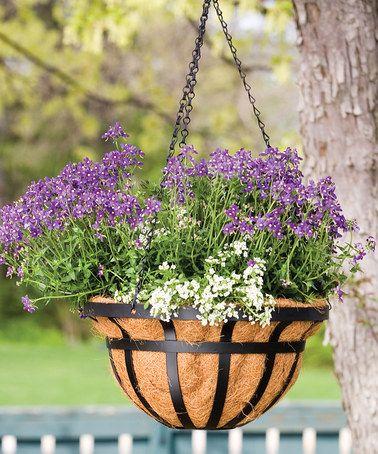 Look at this #zulilyfind! Black Flat Iron Hanging Basket, $14 !!  #zulilyfinds