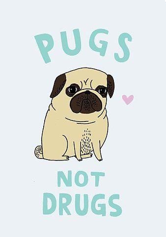 Pugs not drugs.
