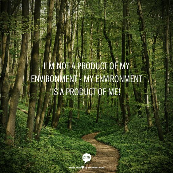 I'm not a product  of my environment - My environment    is a product of me!