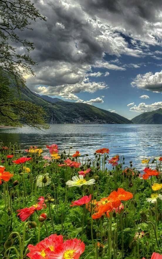 Belle Nature Paysages Printemps Photo Paysage Magnifique Photos Paysage