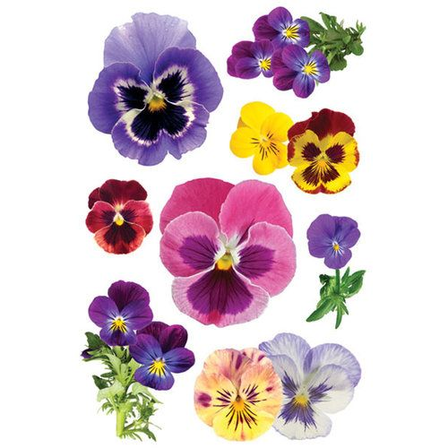 Paper House Productions Garden Collection 3 Dimensional Cardstock Stickers With Glitter And Jewel Accents Pansies In 2020 Flower Painting Watercolor Flowers Pansies Flowers