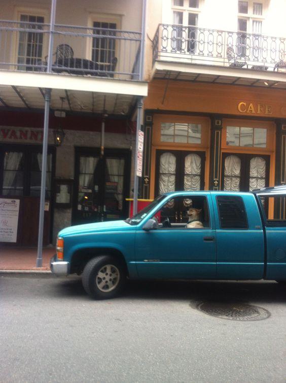 N'Awlins, LA. Always something interesting in the French Quarter during Jazzfest.