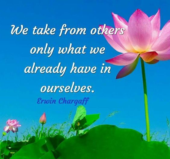 We take from others only what we already have in ourselves. -- Erwin Chargaff  #quote #wordsofwisdom  #dailyheadspace