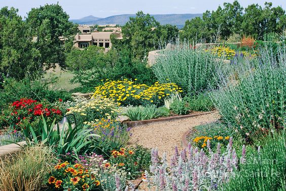 A colorful xeriscape garden design by susan blake of santa for Garden design xeriscape