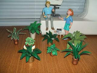 Doreen's Miniature Projects and Tuts: Plant Project