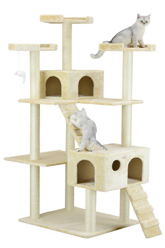 Cat Condo All Cats