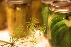 pickles Ingrédients 750 g de concombres – idéalement nains ou de gros cornichons 235 ml de vinaigre blanc (1 tasse) 400 g de sucre blanc (2 tasses) 115 g d'oignons en tranches 1 poivron vert 1 cuillère à soupe de sel