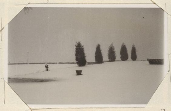 View of trees and a snowy lawn. Monk's House
