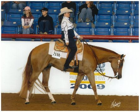 aqha world championship show pictures - Google Search