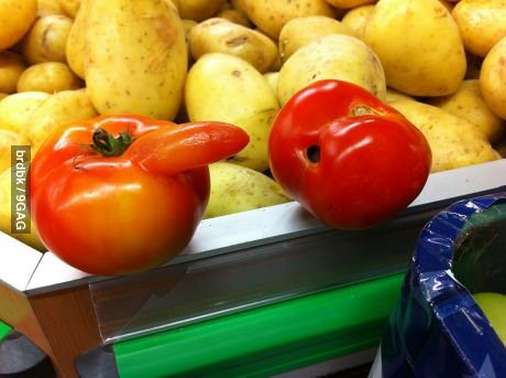 A couple of tomatoes... wait...
