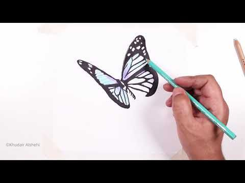 Draw A Butterfly Learn To Draw A Butterfly Step By Step Butterfly Drawings Learning
