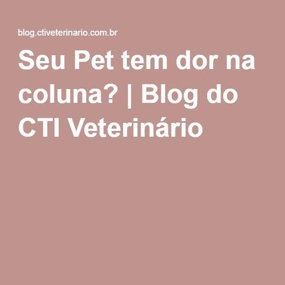 Seu Pet tem dor na coluna? | Blog do CTI Veterinário