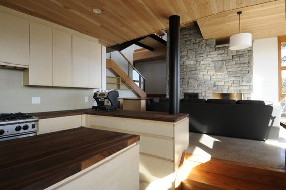 Google Image Result for http://archinspire.org/wp-content/uploads/2010/04/kitchen-area-wood-ceiling-modern-house-interior5.jpg