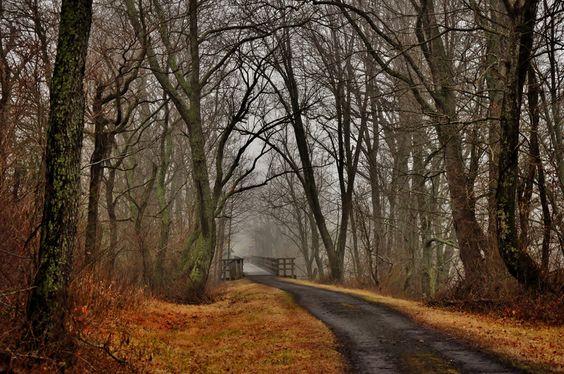 Creeper Trail, Abingdon, VA