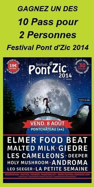 "Gagnez vos places ""Pont d'Zic 2014"" avec Stefline Radio - STEFLINE RADIO"