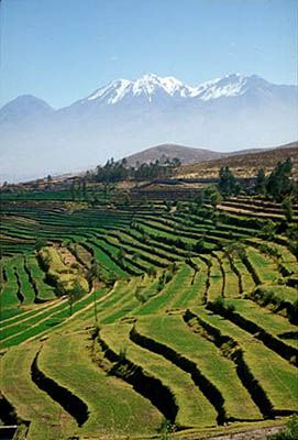 Chachani Volcano, as seen from the terraces of Yumina, Arequipa, Peru;  Photo: Mylene d'Auriol Stoessel.: