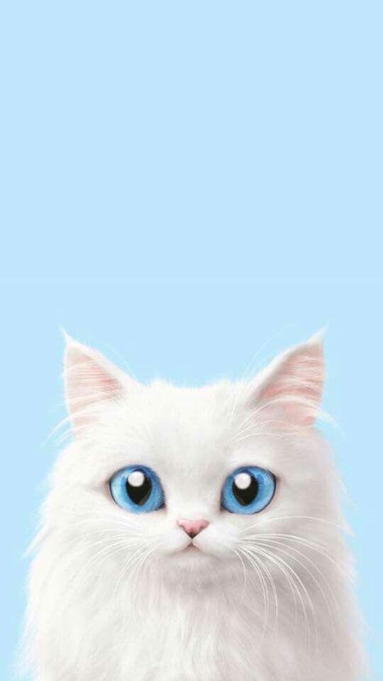White Blue Eyes Kitten Wallpaper Petit Chaton Blanc Aux Yeux Bleus Fond D Ecran Pour Telephone Fond D Ecran Chat Illustration De Chat Dessin Animaux Mignons