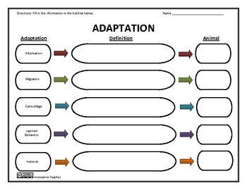 adaptation worksheets
