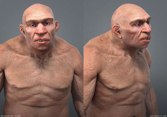 Neanderthal study by soulty666 on deviantART