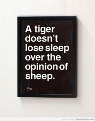 Shahir Zag on Tigers and Sheep