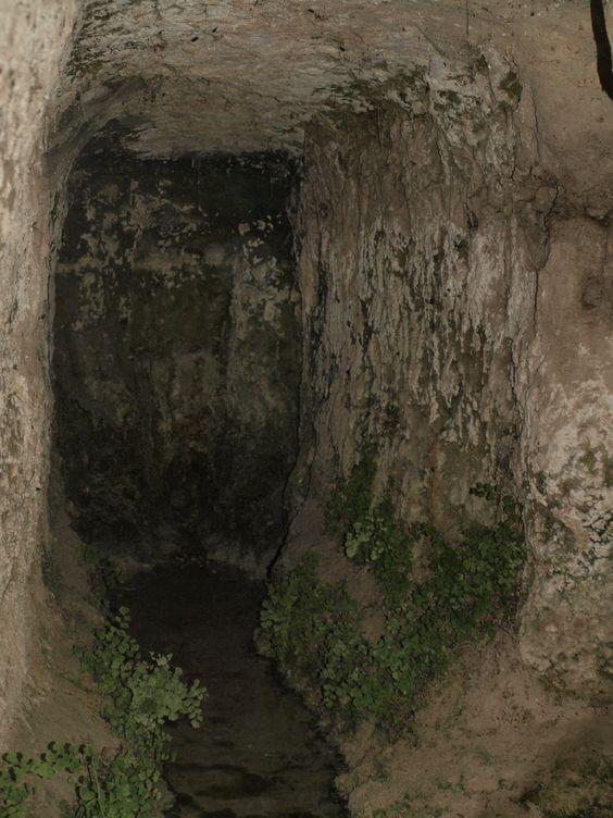 galerias del manantial- Fuente Gorda