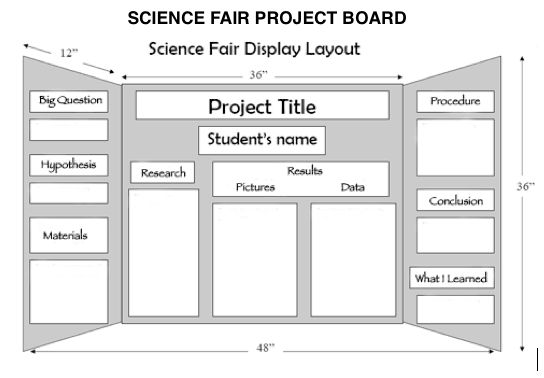 best science fair images school projects science how to lay out a science fair project board
