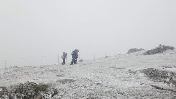 Snow at Mt Bryan near Burra, as a intense arctic cold front passes through south east Australia.  Picture Tony Fiebiger