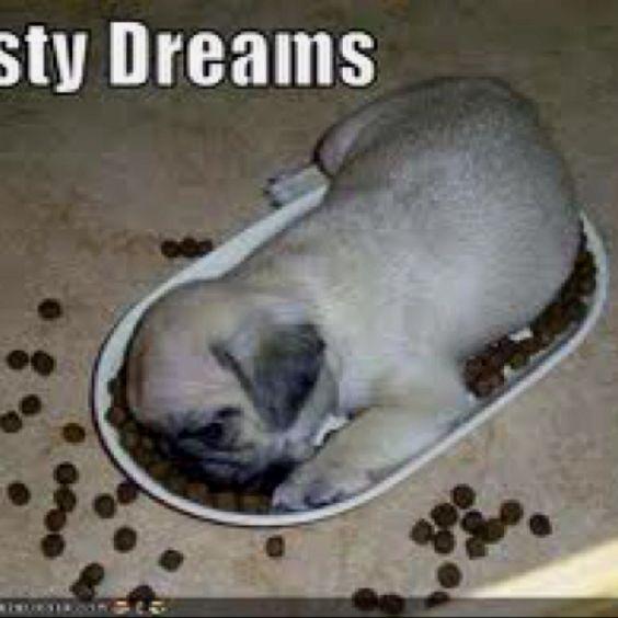 Tasty dreams