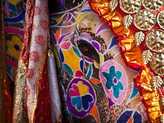 Gorgeous elephant in the Elephant Festival of India