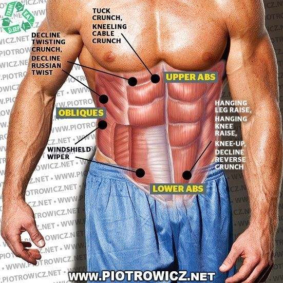 Different Exercises workout different parts of your Abs, learn ...