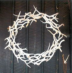 Antler wreath - good way to put sheds to use