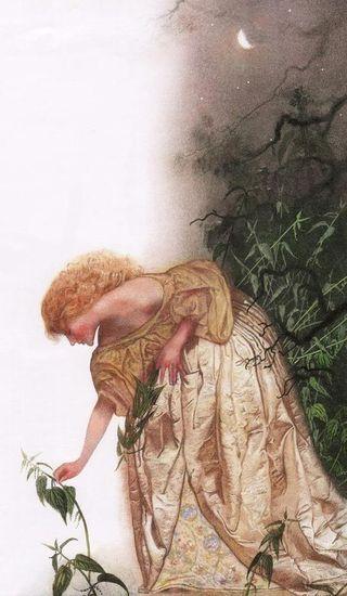 'The Wild Swans' - illustrated by Nadezhda Illarionova