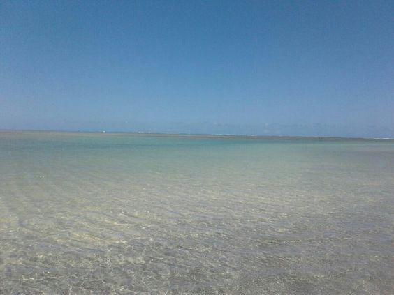 Piscinas naturais, praia de peroba Alagoas