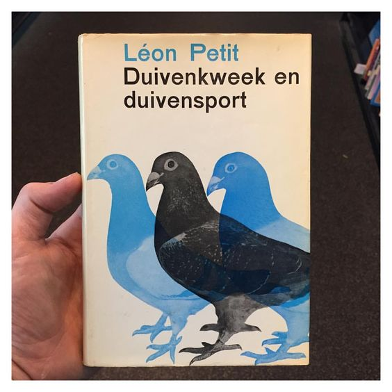 #bookcover #dutchdesign #birdbook #pigeon