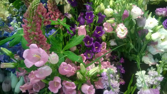 Some of the beautiful summer flowers we have in the cooler today.
