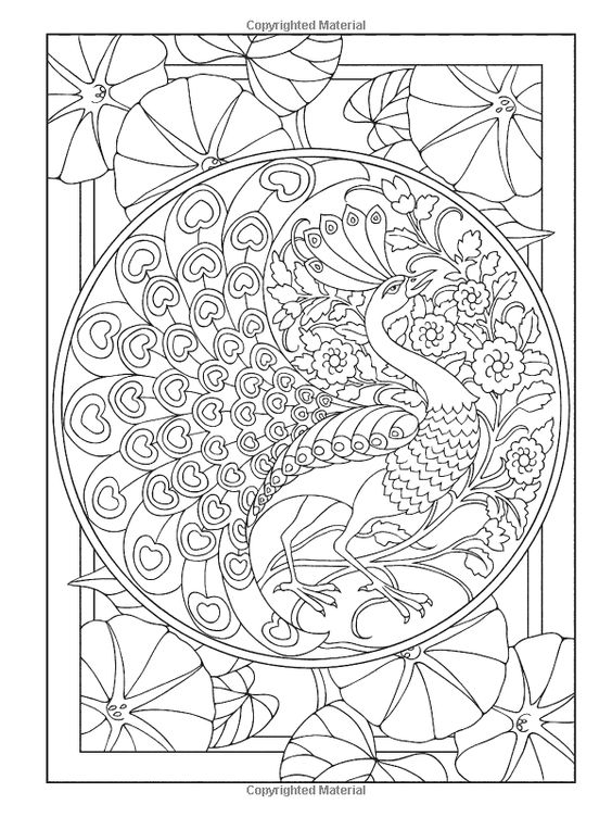 Creative Colouring Patterns : Creative haven peacock designs coloring book