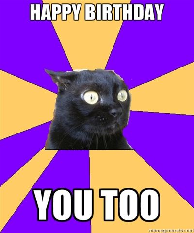 Anxiety cat- hahahahah this is my level of awkwardness