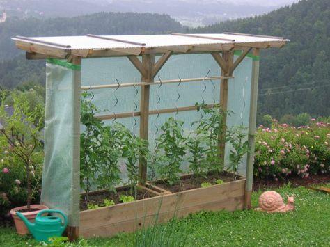 Tomatenbett Mit Dach Aus Druckimpragniertem Holz Tomaten Garten Garten Hochbeet Garten Gewachshaus