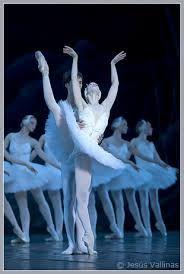 Resultado de imagem para conservatório de dança de lisboa