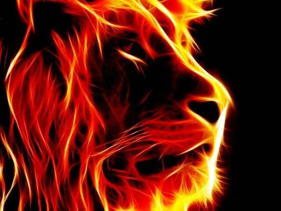 golden LION~