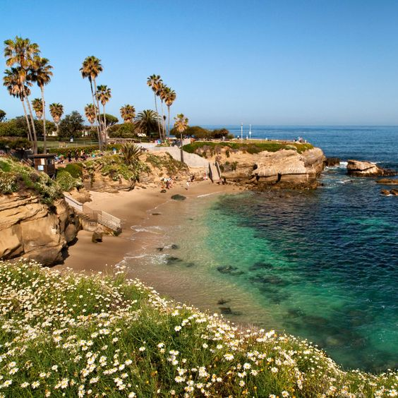 South Pacific Beaches: The Best Beaches In San Diego