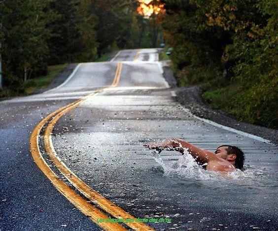 tais toi et nage - Photos Humour