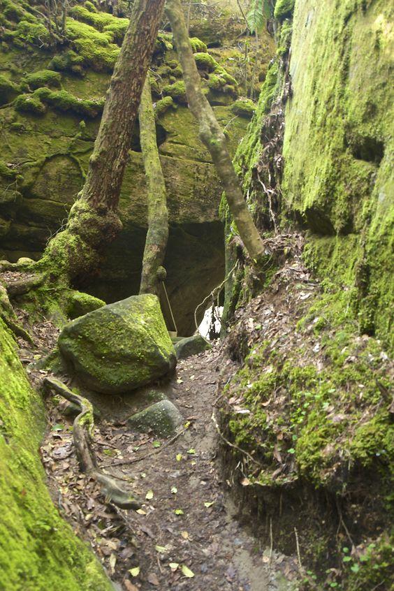 Dismals Canyon Franklin Al