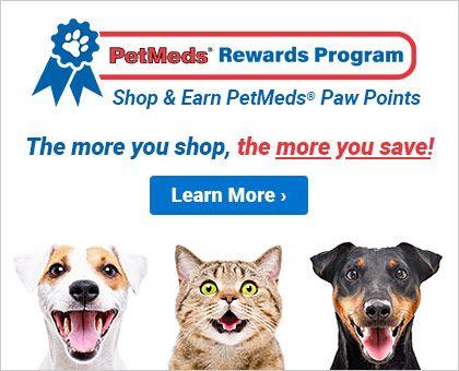 1 800 Petmeds America S Trusted Pet Pharmacy Save Up To 30 Pet Health Rewards Program Pet Parent