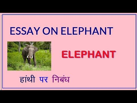 Essay On Elephant In Hindi For Student And Children El An