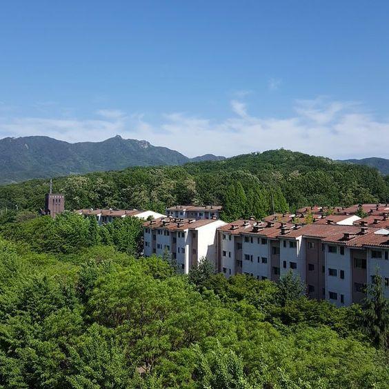 백만장자 부럽지 않은 바람과 숲 하늘. .  . 百万長者も羨ましくない風や森空 .  #하늘 #무보정하늘 #스카이 #풍경 #空 #風景  #sky #landscape by jiyoung.we